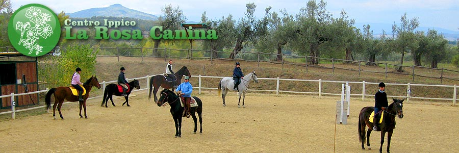 Pferd Mittelschule la Rosa Canina, Panicale. School of horse-riding on the Trasimeno, Perugia.